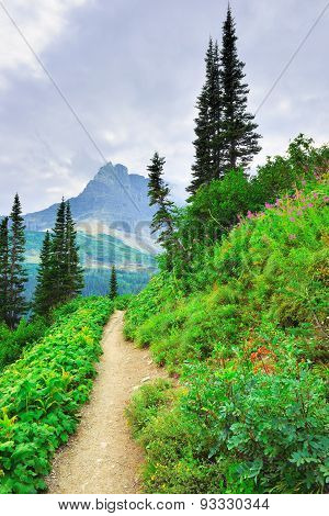 Alpine Trail To Iceberg Lake Glacier In Glacier National Park