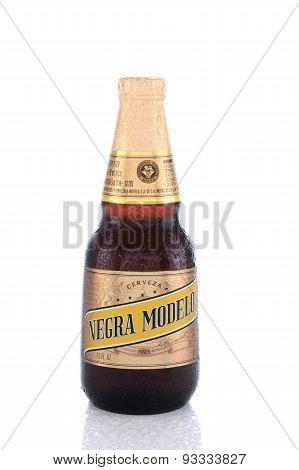 Negra Modelo Bottle
