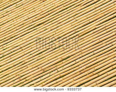 Bamboo Mat Angled Sticks