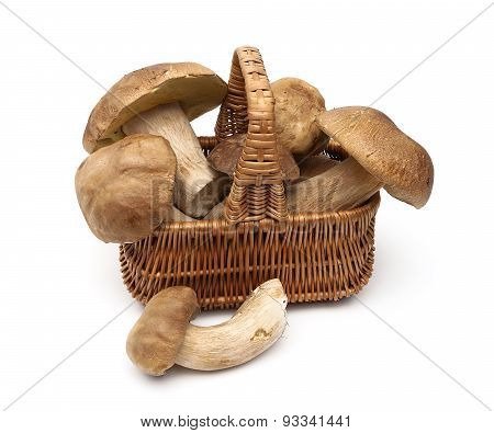 Mushrooms In A Basket Isolated On A White Background