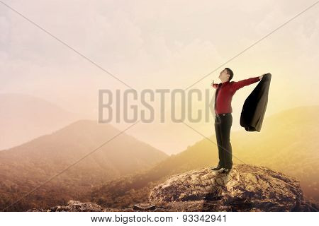 Business Man Standing On The Top Of Mountain