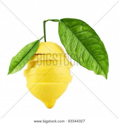 Sliced lemon with the leaves