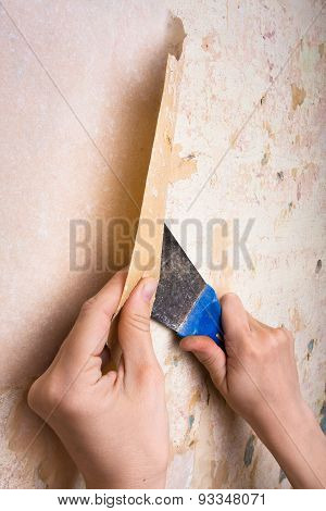 Removal Of Wallpapers With Spatula