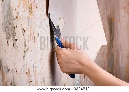 Scraping Off Old Wallpaper