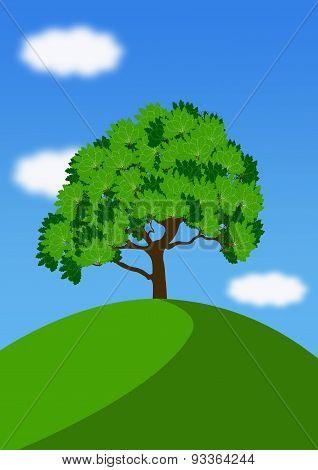 Landscape With Single Oak Tree