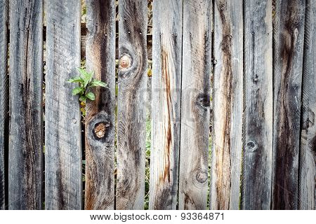 Wooden Plank Fence Background