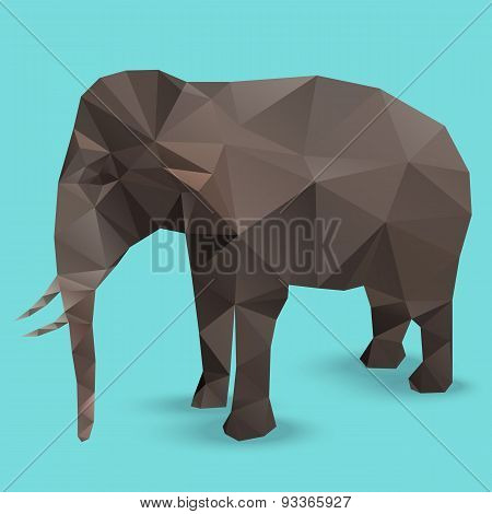 Elephant Polygon Vector Infographic