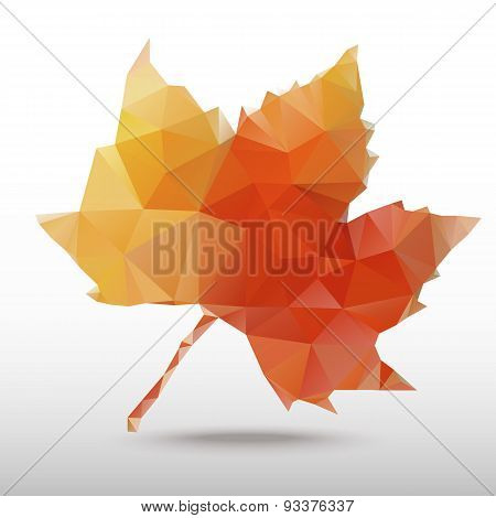 Maple Leaf For Geometric Shapes