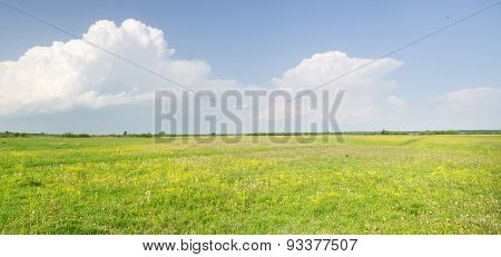 Meadow And Panoramic View