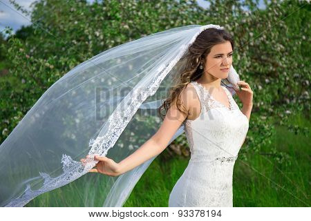 Young Beautiful Bride With Long Veil In Blooming Garden