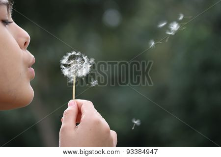 Girl Blows Dandelion