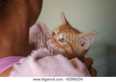 Girl holding baby cat