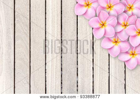 Pink Frangipani Flower On Grey Wooden Plank Background