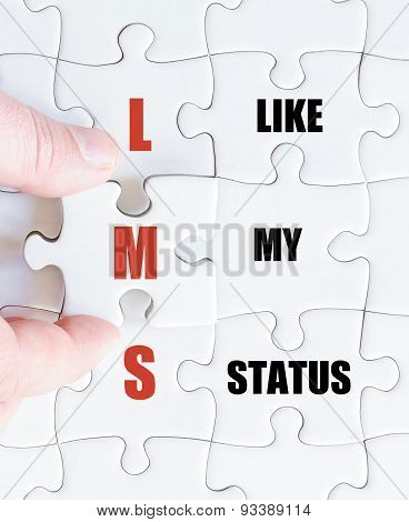 Last Puzzle Piece With Social Media Acronym Lms