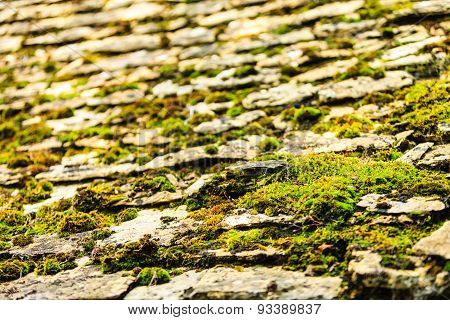 Old Grunge Stone Floor With Moss Pattern Background