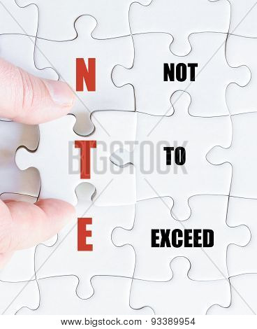 Last Puzzle Piece With Business Acronym Nte
