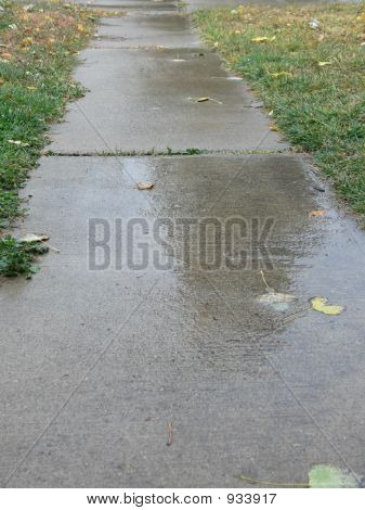 Sidewalk After The Rain