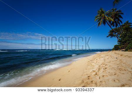 Tropical White Sand Beach In Oahu, Hawaii