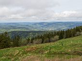 stock photo of grassland  - Overlooking the Vosges hills in France past a wet grassland - JPG