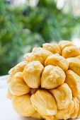 pic of south east asia  - Group of fresh chempedak arils a fruit native to South East Asia region - JPG