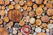 stock photo of debonair  - The texture design with timber wood for decorate project - JPG