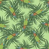 stock photo of sun perch  - Seamless pattern with colourful parrot bird sitting on the perch with palm leaves - JPG