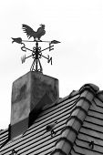foto of roosters  - Rooster weather vane on the roof with black tiles - JPG