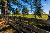 pic of texas star  - Old Wooden Plank Fence in Texas in Front of a Field of Wildflowers - JPG