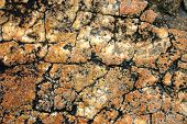 Weathered Granite Background poster