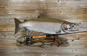stock photo of fly rod  - Large salmon with fly rod and reel on rocks and rustic wood - JPG