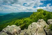 stock photo of blue ridge mountains  - View of the Blue Ridge Mountains from Turk Mountain in Shenandoah National Park Virginia - JPG