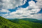 pic of virginia  - View from an overlook on Skyline Drive in Shenandoah National Park Virginia - JPG