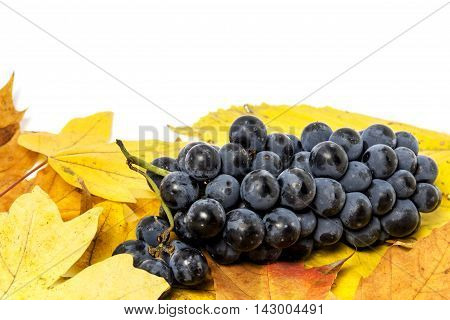 Autumn composition, apple and lemon with yellow leaves on a white background