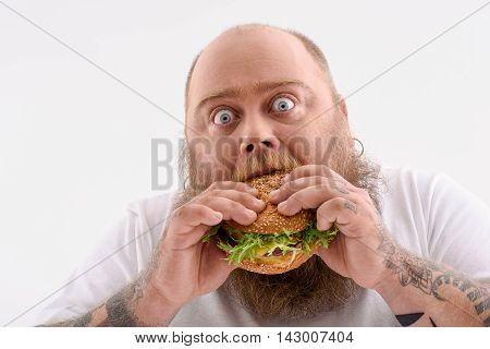 Hungry thick man is biting cheeseburger with desire. He is looking forward with surprise. Isolated