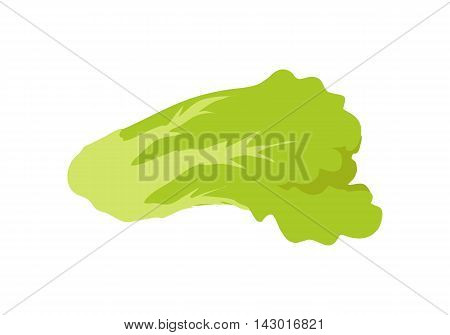 Green salad banner. Healthy food concept. Organic natural food. Consumption of high quality nourishment food. Part of series of promotion healthy diet and good fit. Vector illustration