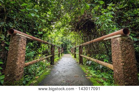 Long concrete red bridge with pipe wall covered by green tree inside tropical forest