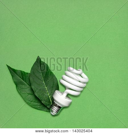Creative still life of energy saving bulb with leaves as a symbol of environmental protection.