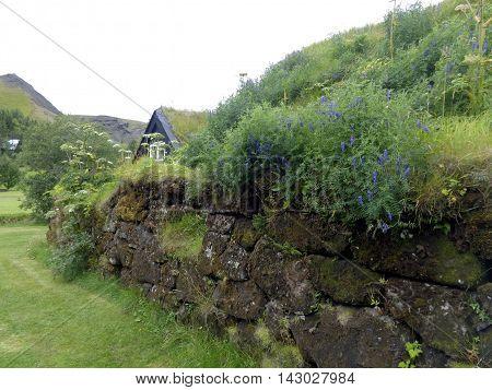 Traditional Icelandic - Viking turf house in Skogar, Iceland