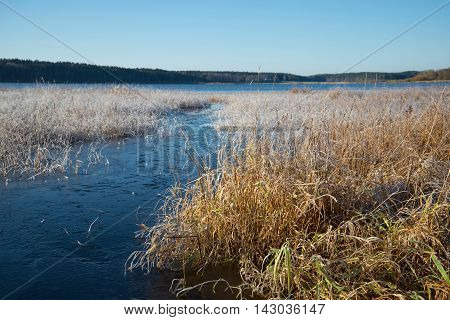 The october frost on the lake Kucane. The Estate