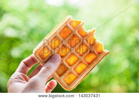 Hand holds the half-eaten Belgian waffle. Beautiful bokeh shallow depth of field