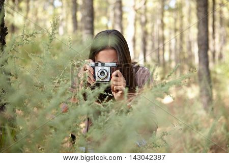 A young brunette focusing her camera to take a picture of a young sapling in a pine forest in the dappled late afternoon sunshine