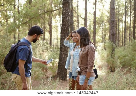 Worried Friends In A Pine Forest