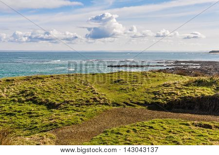 View Of The Coast Near Slope Point, New Zealand