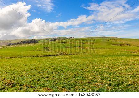 Rural Landscape Near Slope Point, New Zealand
