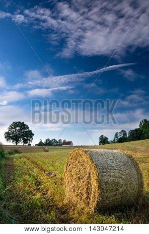 Haystack on a field of stubble. August countryside landscape.