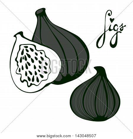 Hand drawn figs. Eco food. Vector illustration