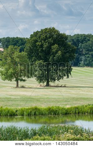 Countryside landscape in rural English countryside by the river bank
