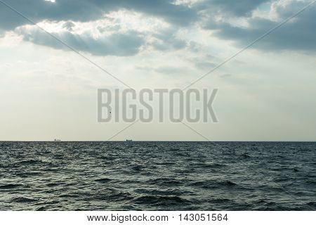 Two cargo ships floating in the distance, followed by birds