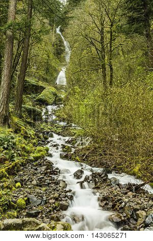 Wahkeena falls in Oregon on Columbia River Gorge with mossy rocks and soft smooth flowing water