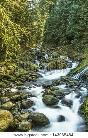 Stream leading to triple falls on hike in Oregon by Columbia River Gorge with mossy rocks and soft smooth flowing water